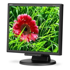 Desktop Monitor - Multisync E171m - 17in - 1280x1024 (sxga) - Black