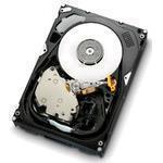Hard Drive Ultrastar 15k600 450GB 3.5in Fcal 4GB/s 15k Rpm 64MB (hus156045vlf400)